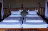ベッド 170x110 - 豪華なキャンプ~最上級の贅沢を楽しみたい方へ~